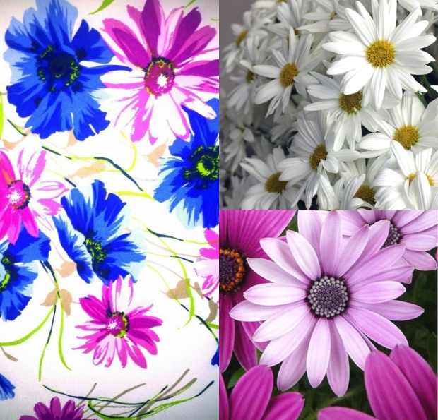 spring inspration collage